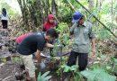 Sambut Milad Fakultas, LEM FPSB Selenggarakan Acara Bertema Lingkungan
